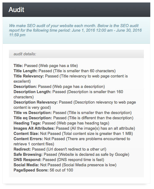 seo audit screenshot